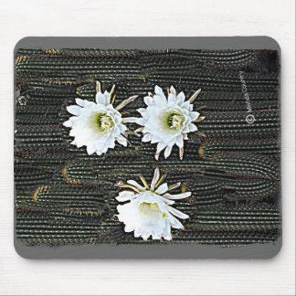 White Cactus Blooms Mousepad