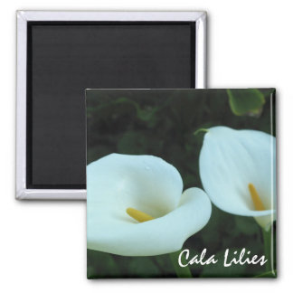White Cala Lilies Square Magnet