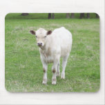 White Calf Mousepad