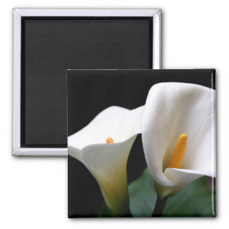 White Calla Lily Flower Square Magnet