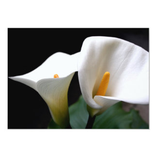 White Calla Lily Invitation