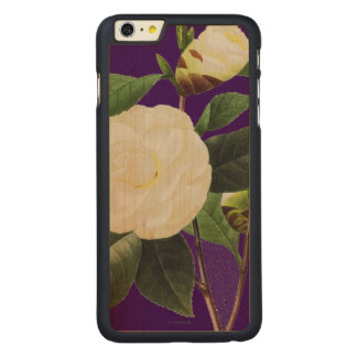 White Camellia, 1833 Carved Maple iPhone 6 Plus Case