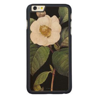 White Camellia Carved Maple iPhone 6 Plus Case