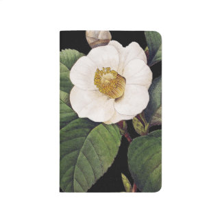 White Camellia Journal