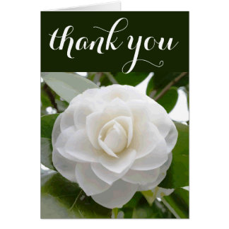 White Camellia Watercolor Fine Floral Thank You