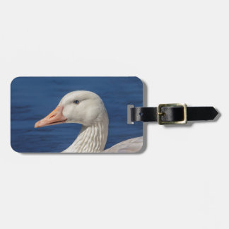 White Canadian Goose Luggage Tag
