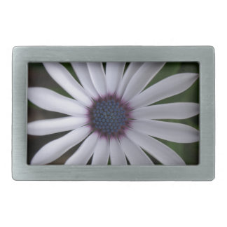 WHITE CAPE DAISY FLOWER Rectangular Belt Buckle