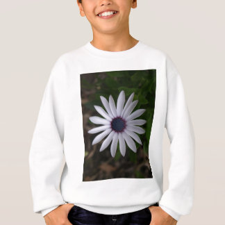 WHITE CAPE DAISY FLOWER SWEATSHIRT