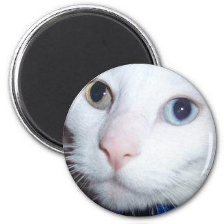 white cat 6 cm round magnet