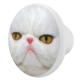 White Cat Ceramic Knob