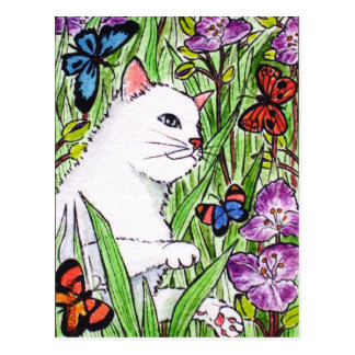 White cat chasing butterflies amongst flowers post cards