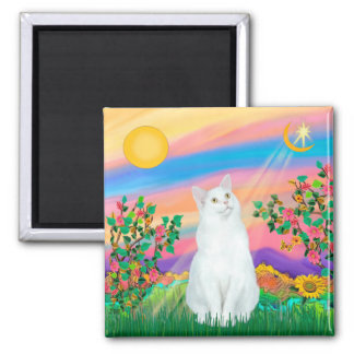 White Cat - Day Star Square Magnet