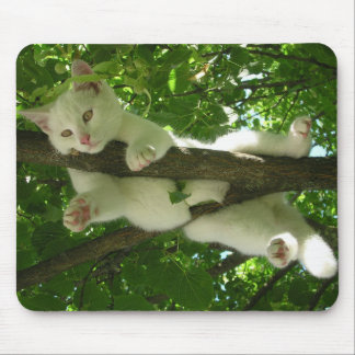 White Cat in a Tree Mouse Pads
