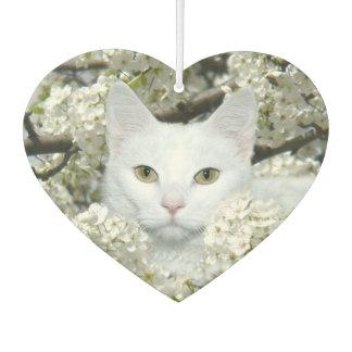 White cat in white blossoms car air freshener