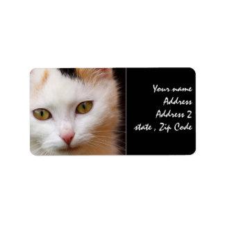White cat address label