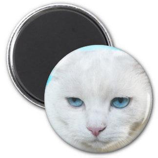 White cat refrigerator magnet