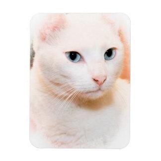 WHITE CAT MAGNET RECTANGULAR PHOTO MAGNET