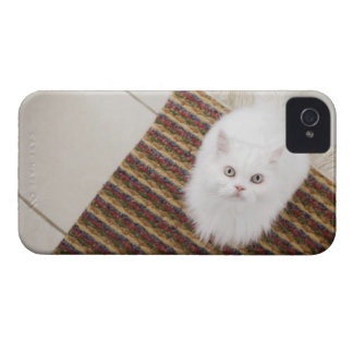 White cat sitting on mat Case-Mate iPhone 4 cases