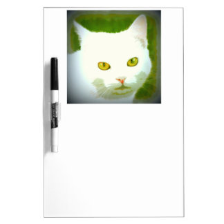 white cat staring dry erase boards