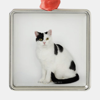 White cat with black spots christmas ornament
