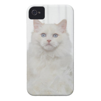 White Cat with Feathers Case-Mate iPhone 4 Cases