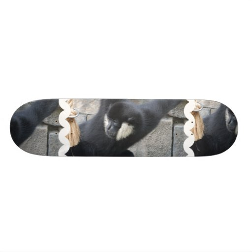 White Cheeked Capuchin Monkey Skateboard