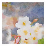 White Cherry Blossoms Digital Watercolor Painting