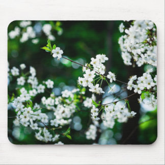 White Cherry Blossoms Green Leaves Mouse Pad