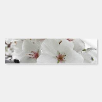 White Cherry Blossoms Photo Bumper Sticker