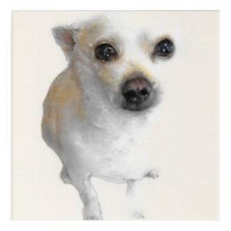 White Chihuahua, acrylic wall art