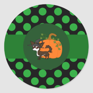 White & Chocolate Long Hair Chihuahua with Pumpkin Round Sticker