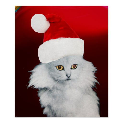 WHITE CHRISTMAS CAT WITH SANTA CLAUS HAT ,Red Ruby Poster