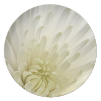 White Chrysanthemum Dinner Plates