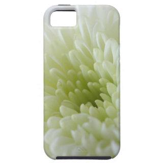 White Chrysanthemum iPhone 5 Case