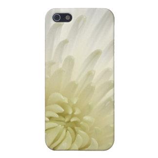 White Chrysanthemum iPhone 5 Cases