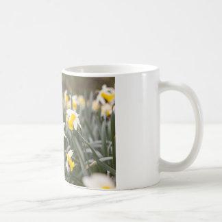 White Classic Mug with a welsh Daffodil design