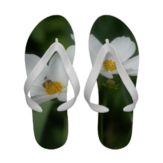 White Cosmos Flowers With Bee Sandals