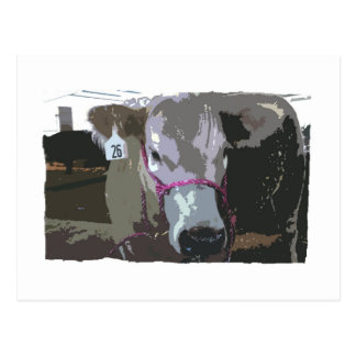 White cow head picture cartoonized post cards