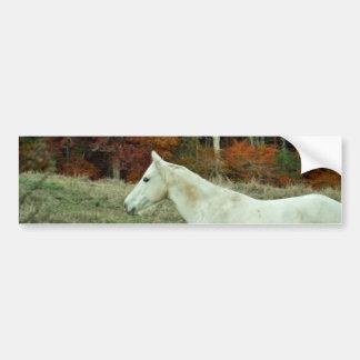 White Cream Horse in an Autumn Field Bumper Sticker