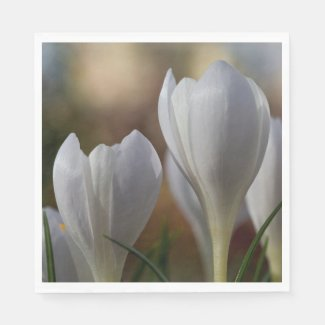 White Crocuses Floral Paper Napkins