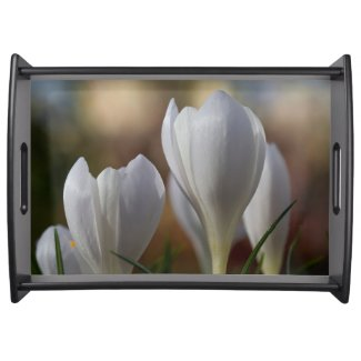 White Crocuses Floral Serving Tray
