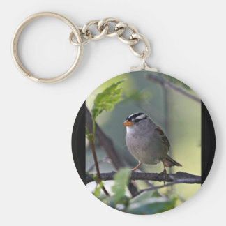 White-crowned Sparrow Basic Round Button Key Ring