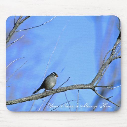 White-crowned sparrow mouse pad