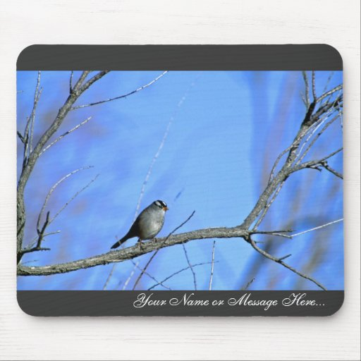 White-crowned sparrow mousepads