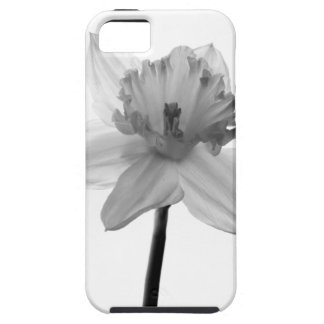 White Daffodil iPhone 5/5S Cases