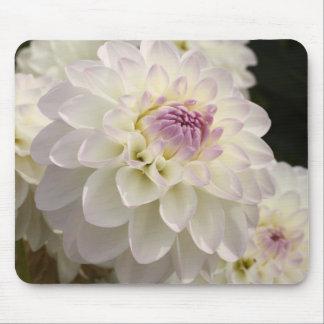 white dahlias mouse mat