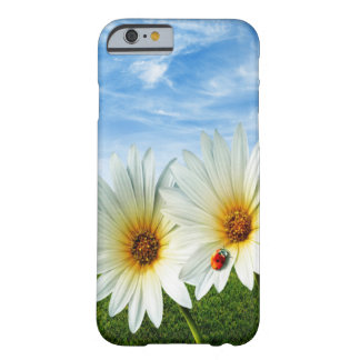 White Daises Barely There iPhone 6 Case