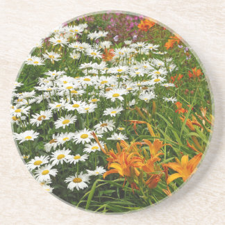White daisies and orange lilies drink coasters