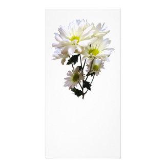 White Daisies Custom Photo Card