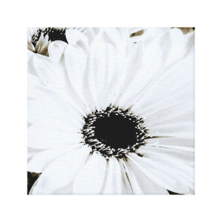 White Daisies - Customized Daisy Flower Template Canvas Print